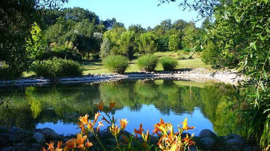 La Campagne St Lazare: small pond in the garden