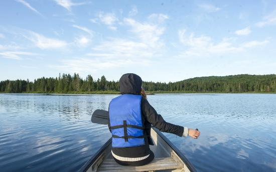 Auberge Refuge du Trappeur: Moose Viewing/Canoe Activity