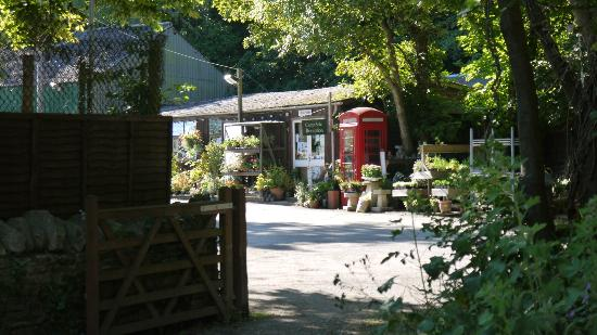Norden House: Our Farm shop just across from the House has a fantastic selection of Produce,Plants & much more
