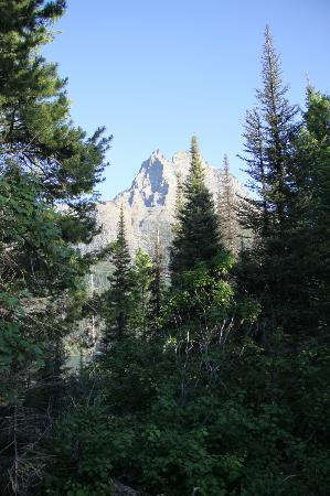 Two Medicine Campground: morning view from campsite