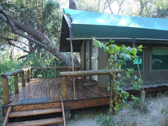 Camp Okavango: tenda