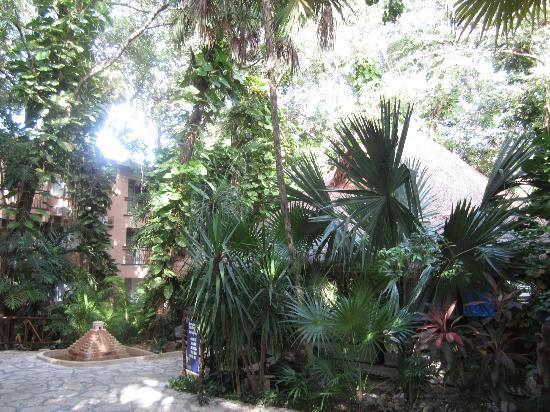 Hotel El Tukan: Interior Tukan