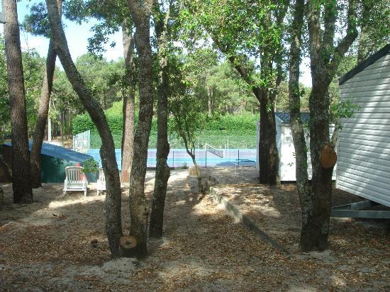 Camping de la Cote d'Argent: VIEW of the tennis court
