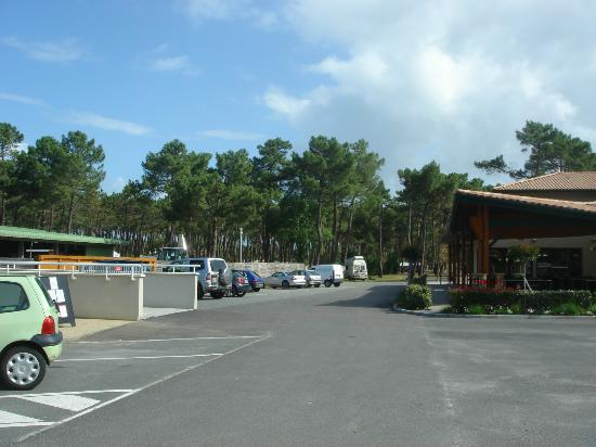 Camping de la Cote d'Argent: Camp site grounds