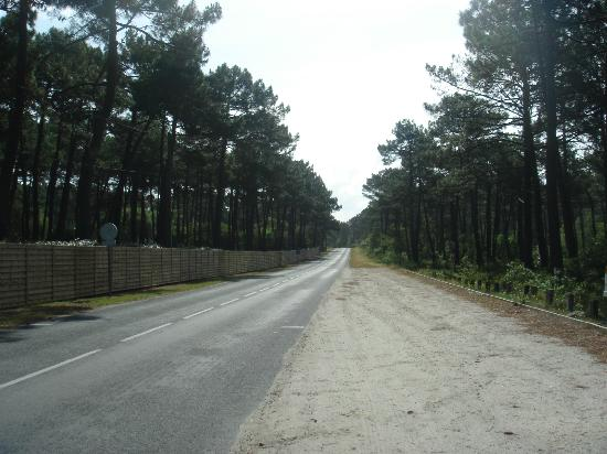Camping de la Cote d'Argent: the main road outside the campsite