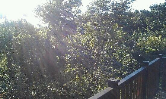 Lindale Holiday Park: view from part of decking