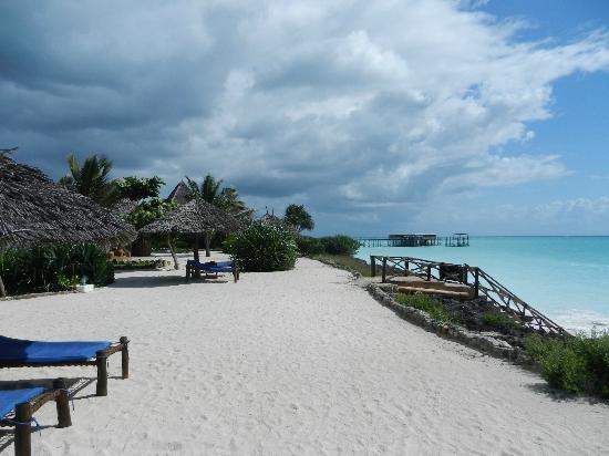 The Zanzibari : The private beach