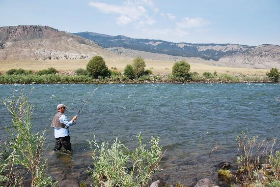 Headwaters of the Yellowstone Bed and Breakfast: Caught one!