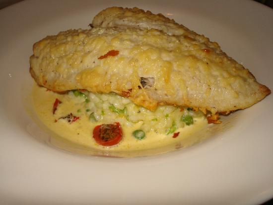 Ketch 55 Seafood Grill: Parmesan crusted flounder on a bed of creamy risotto.