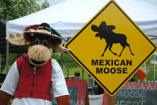 The Mexican Moose: Nice people; some of the best Mexican food I've ever had.
