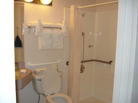 باي سايد ريزورت هوتل: Wheelchair accessible bathroom 