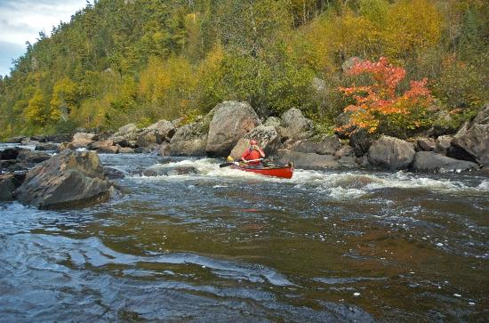 Agawa Canyon Tour Train: Running the rapid at Mile 115, very tough rapid in higher water.