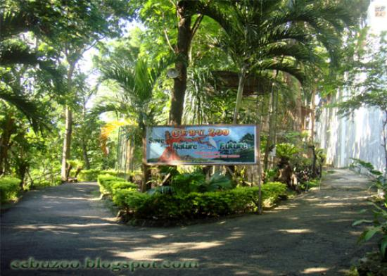 Cebu zoo cebu city philippines 2017 reviews top tips Garden city zoo