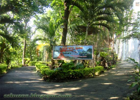 Cebu zoo cebu city philippines 2017 reviews top tips Garden city zoo