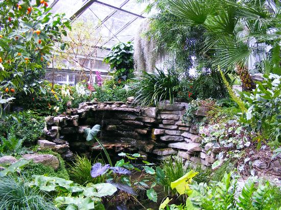 Indoor waterfall picture of allan gardens conservatory for Garden design ideas ontario