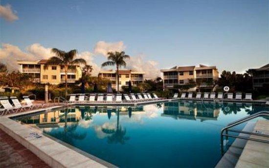 Shell Island Beach Club: The big pool