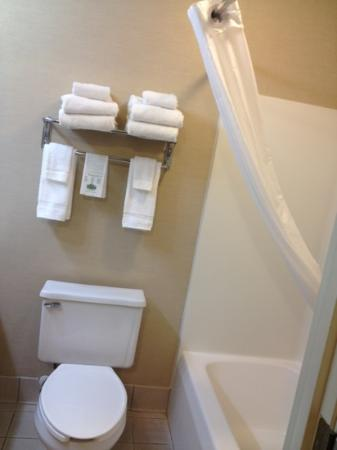 Country Inn & Suites By Carlson, Madison: bathroom towels were thin and used hard