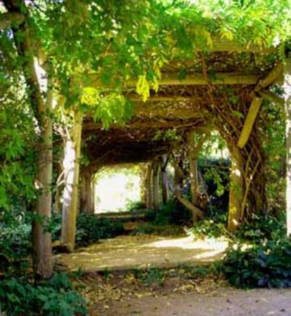 Markdale Homestead : Pergola Before Reconstruction