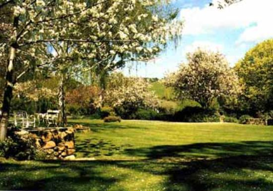 Markdale Homestead : Spring in the Garden