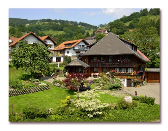 Haus Erika UPDATED 2016 Pension Reviews Wieden Baden