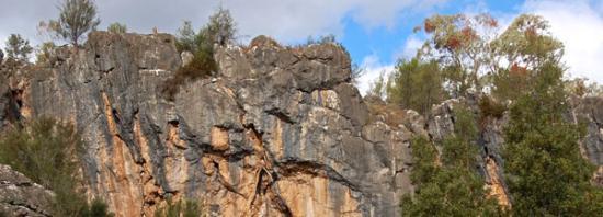 Borenore Karst Conservation Reserve Foto
