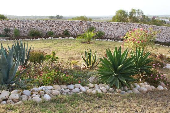 Villa Gonatouki: Garden 