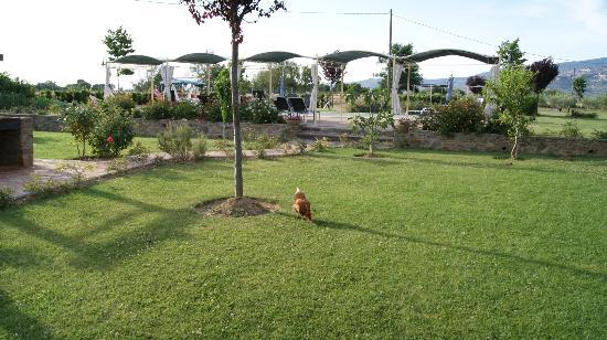 La Mucchia Casa Vacanza: Il gallo e il giardino/ The rooster and the gardens