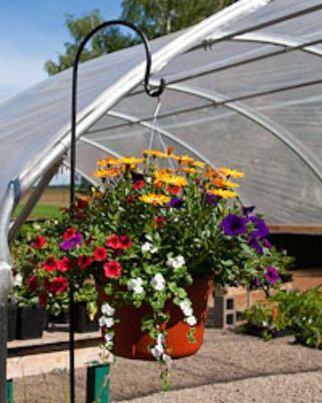 Bushue Family Farm & Nursery Photo