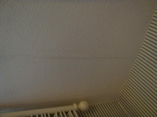 Woodlands Hotel & Suites - Colonial Williamsburg: Crack in ceiling from one end to the other.