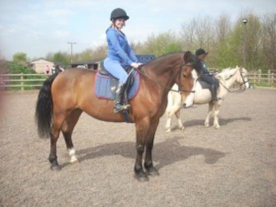 Royds Hall Riding School Photo
