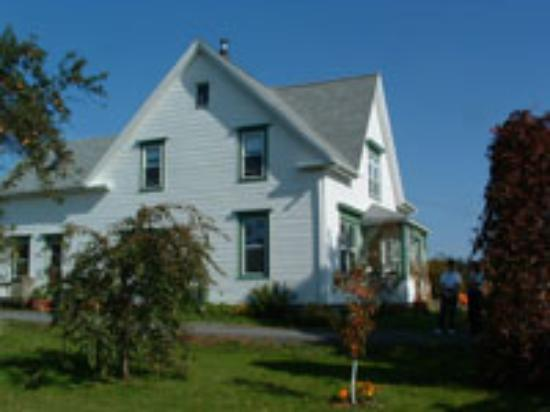Croft House Bed & Breakfast: Side view