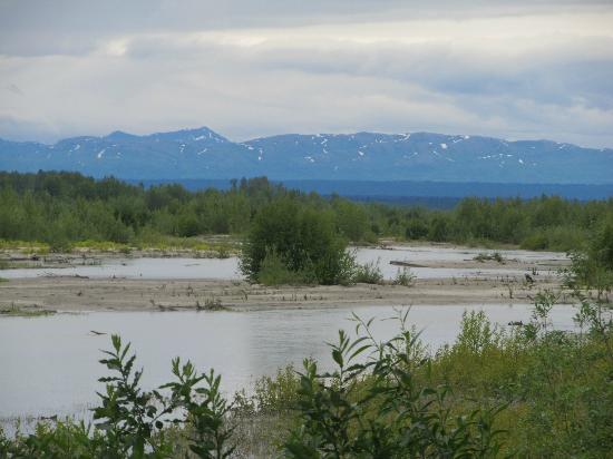 Susitna River Lodging: bring a canoe or ask to borrow theirs - BnB right on the river