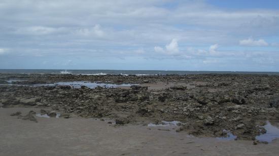Carapibus Beach