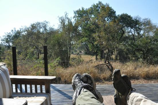 Honeyguide Tented Safari Camps : View of watering hole from main building