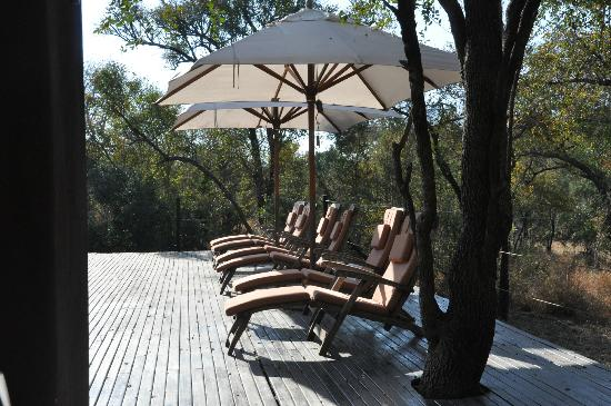 Honeyguide Tented Safari Camps: Lounge near pool
