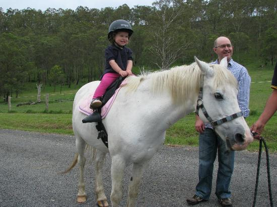 Hill Top Country Guest House : Pony rides at Hill Top