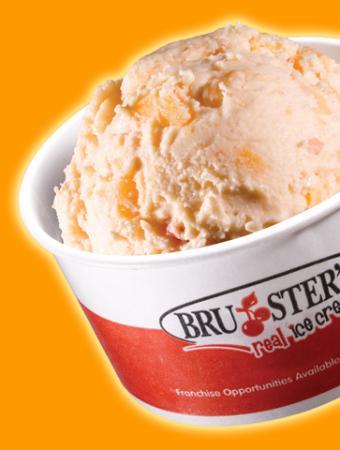 Bruster's Ice Cream