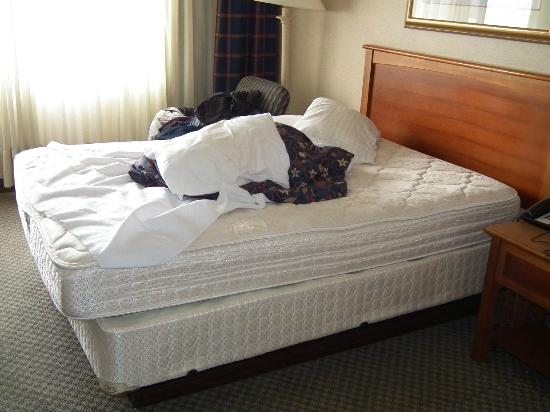 Rodeway Inn: LEFT RM. AT 11AM CAME BACK AT 6:30PM ROOM STILL NOT MADE UP BY MAID.