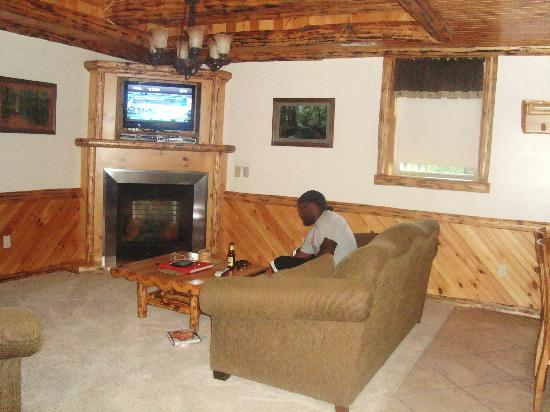 Sojourner's Lodge & Log Cabin Suites: spacious living area,fireplace,flat screen