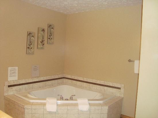 Sojourner's Lodge & Log Cabin Suites: Jacuzzi