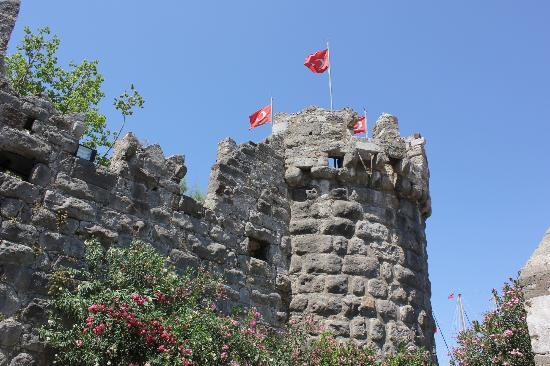 Bodrum Kalesi: Castle