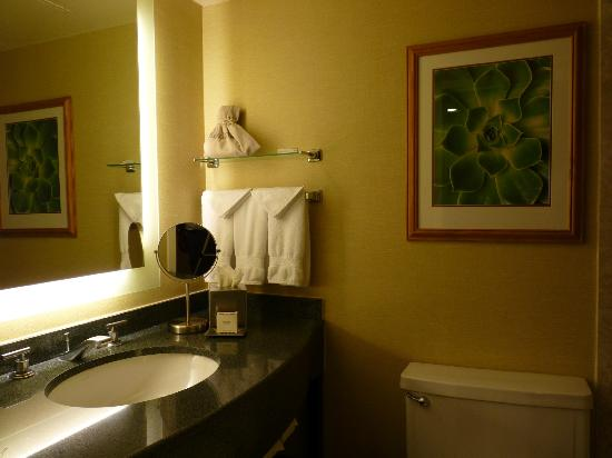 Hilton Scottsdale Resort & Villas: The Nice Bathroom