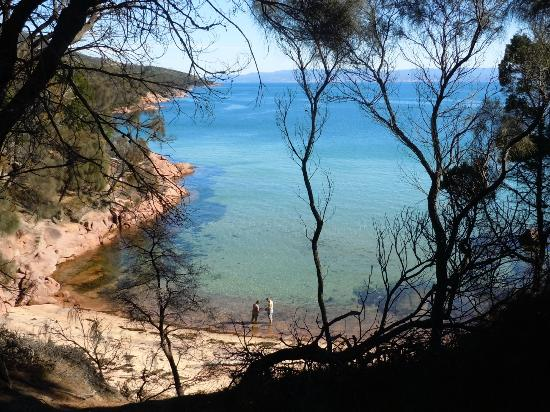 Meredith House and Mews: Honeymoon Bay - Freycinet National Park (45 mins)