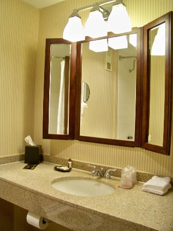 Sheraton Milwaukee Brookfield Hotel: Bathroom Vanity