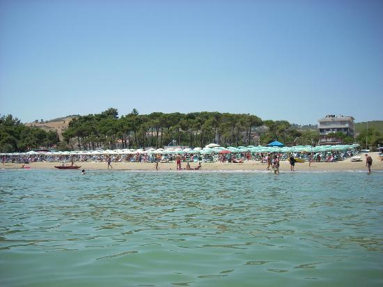 Hotel Saint Tropez: La spiaggia vista dal mare