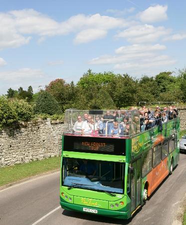 New Forest Tour Bus Lymington