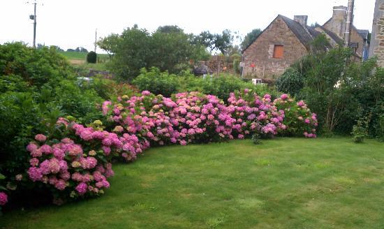 Maison de la Vallee : Well-kept garden