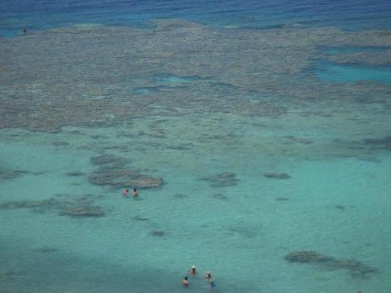 Jaz Fanara Residence: Beach