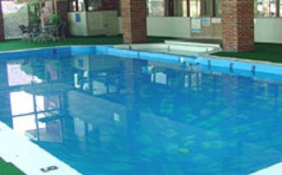 Brentwood Motor Inn: Pool View
