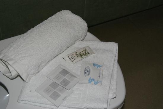 Viaurelia Hotel : Baño